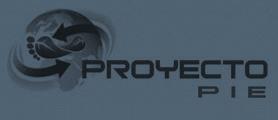 Proyecto Pie
